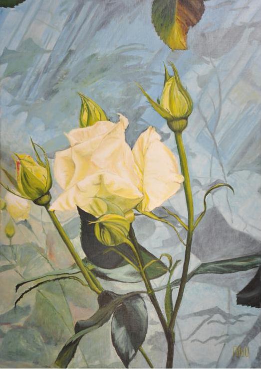 Rose blanche - 320 Euros