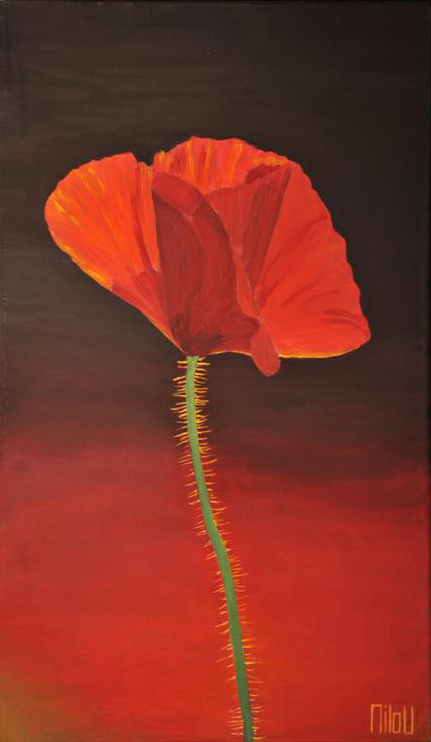 Le coquelicot - INDISPONIBLE